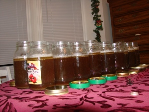 Row of Venison Broth filled Jar's lined up while they cool