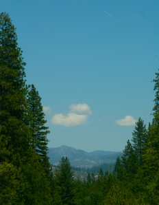 View from the road through the trees to yon far mountains