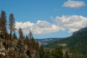 Spectacular View, burned ridge on the left