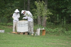 Steve teaching a friend how to work the bees with the hive in our backyard